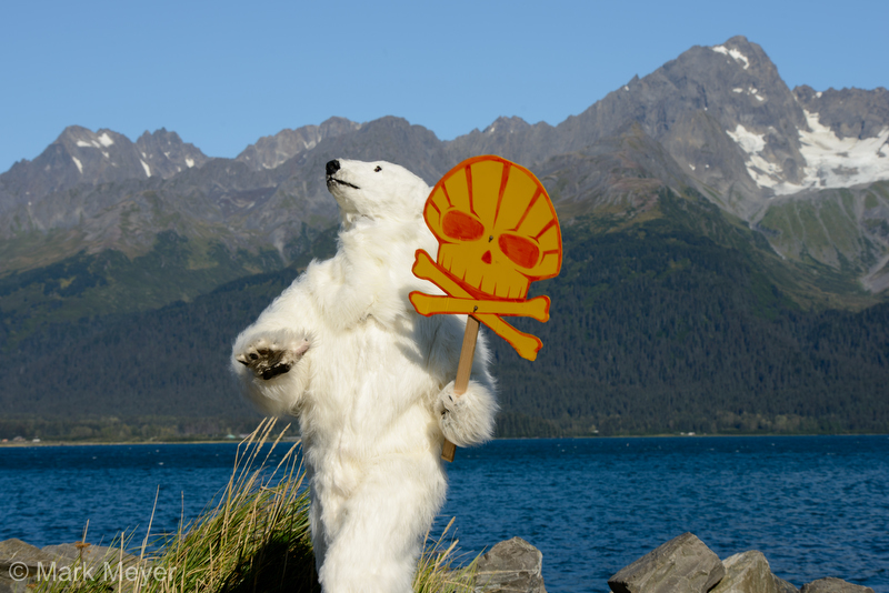 FrostPaw the Bear says ShellNo