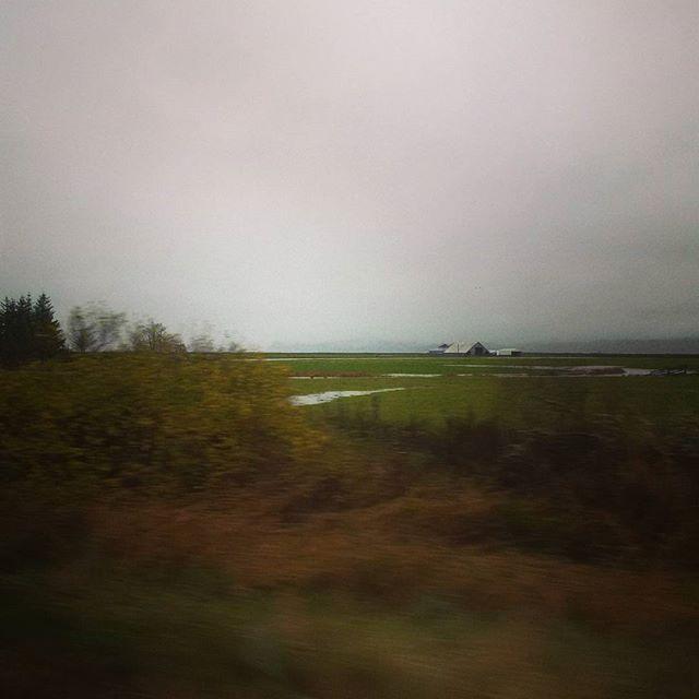 A Pacific County farm on a rainy day