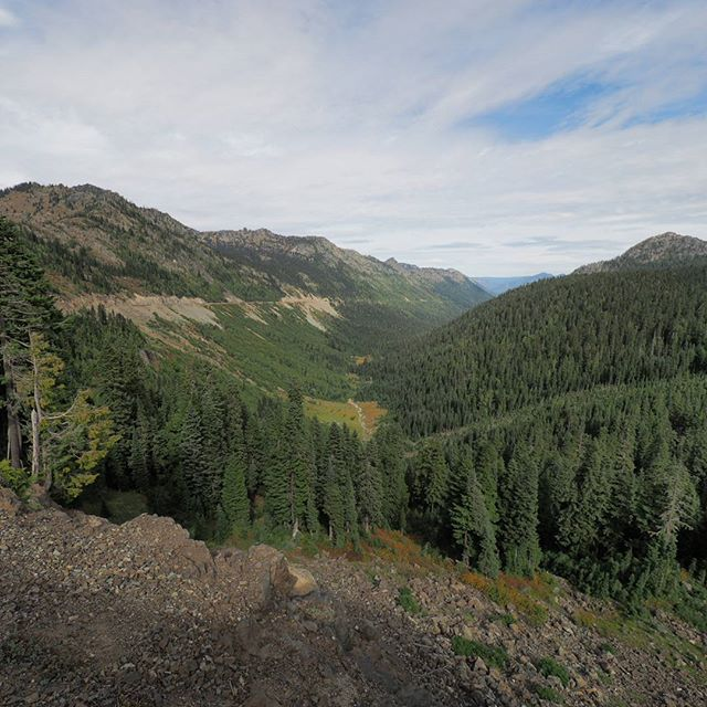 Summertime delight: The view heading down from Chinook Pass on SR 410, which is only open to auto traffic seasonally