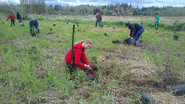 Celebrating Earth Day weekend the NPI way: A tree planting