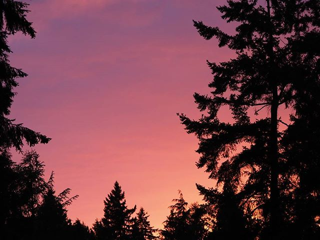 Just another sunset in the beautiful Pacific Northwest