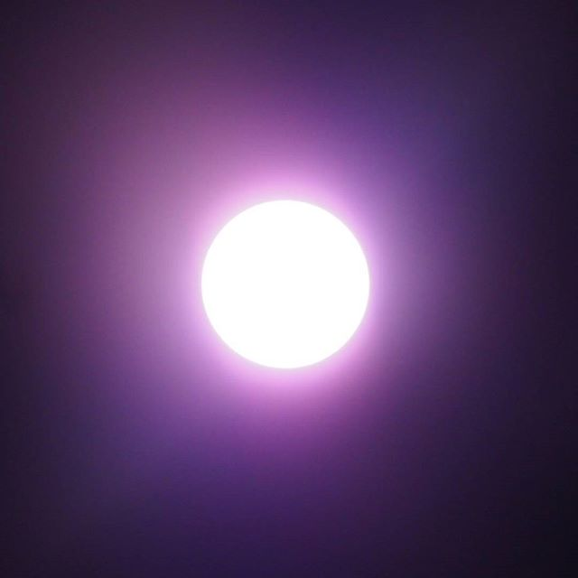 Another summer sun snap (using a different solar filter)