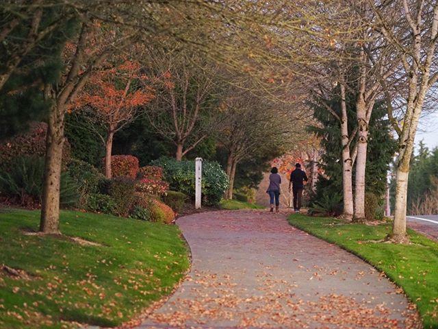 A couple on an autumn stroll