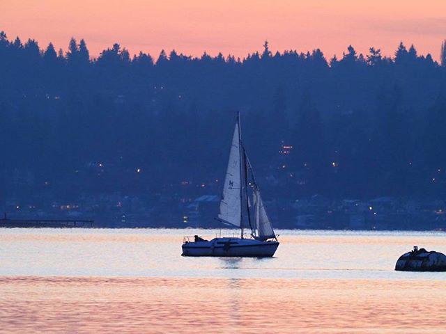 Sailboat on Lake Washington