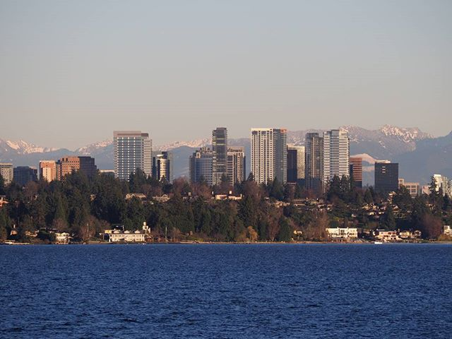The view from Madrona: Clear weather gives Bellevue's skyline a Cascade Mountain backdrop