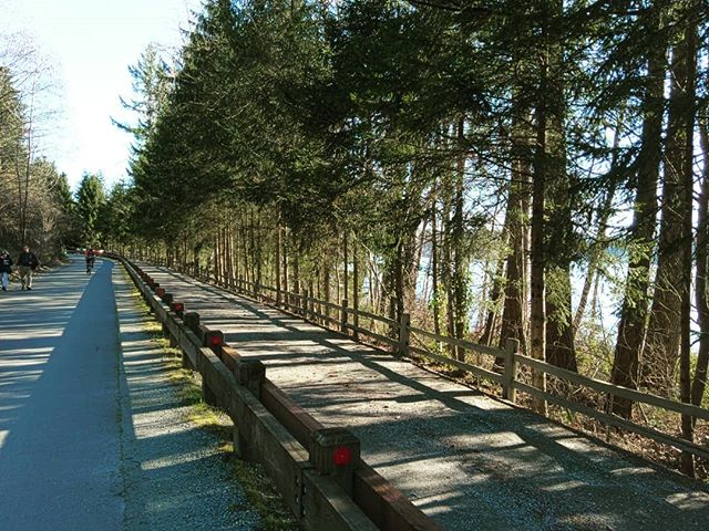 Glimpse of the East Lake Sammamish trail on a warm, sunny Sunday #CapturedByLight