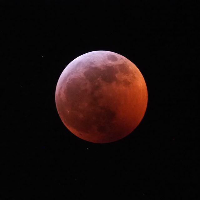 "Lunar Eclipse flashback: The ""super blood wolf moon"" was hyped as a not to be missed stargazing opportunity, and this image shows why"