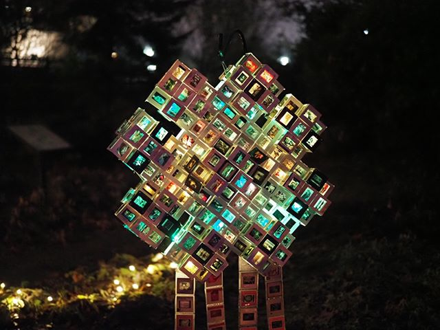 NPI at RedmondLights 2019: An art installation along the Luminary Walk