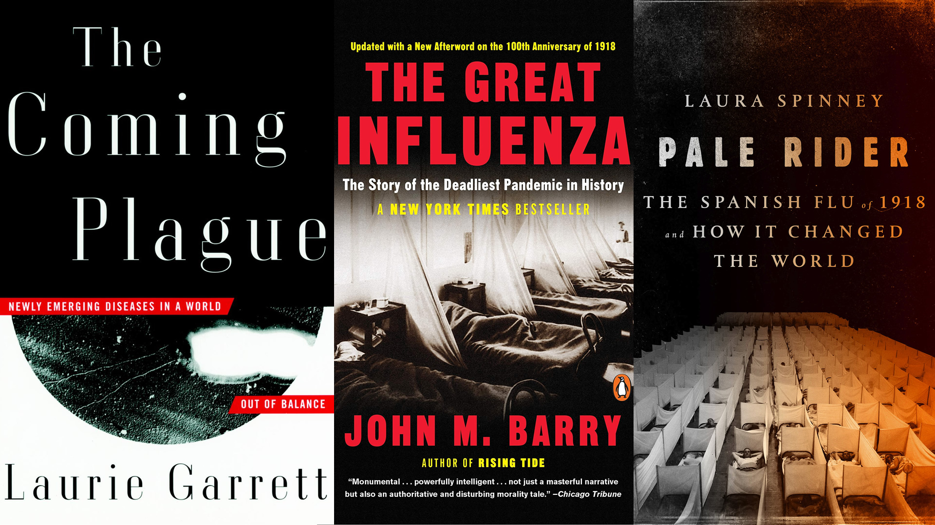 Pandemic-related books