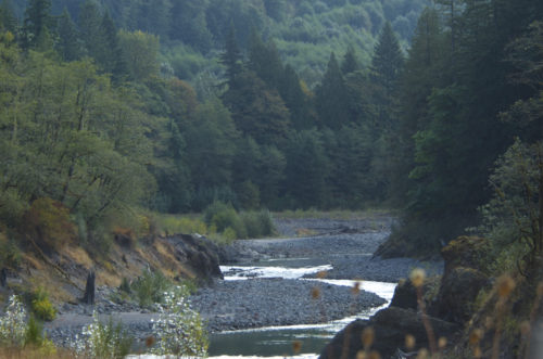 The wild and scenic Sandy River