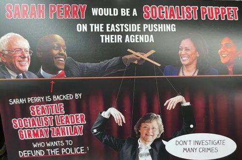 Kathy Lambert's offensive, racist mailer